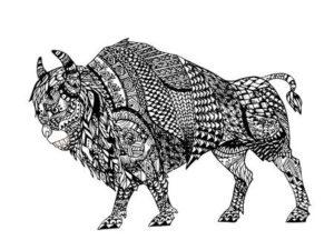 bufalo para pintar