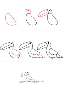 como pintar un tucan