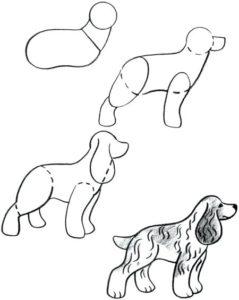 dibujo cachorro perro