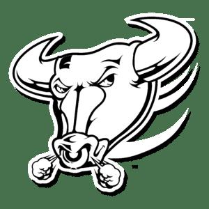 dibujo cara toro
