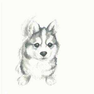 dibujos de cachorros para colorear