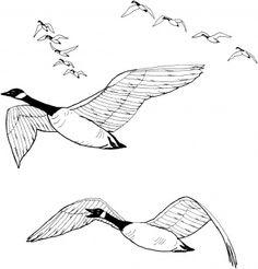 dibujos de gansos volando