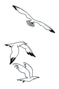 figuras de gaviotas