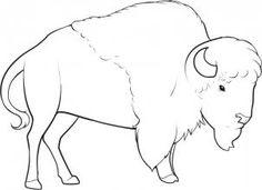 imagenes de bisontes americanos