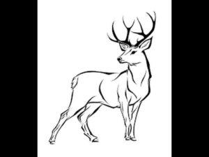 imagenes de ciervos animados