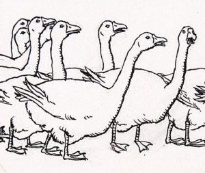 imagenes de gansos para colorear