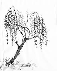 arbol dibujo a lapiz