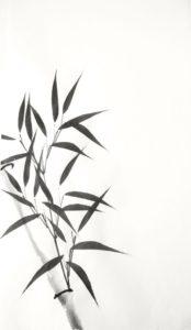 bamboo vector free