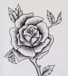como dibujar una rosa paso a paso