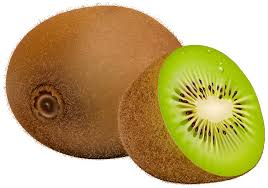 dibujo de kiwi para colorear