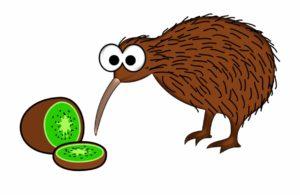 dibujo del kiwi