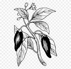 dibujos de chiles en nogada