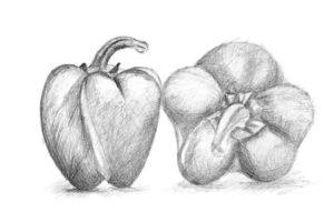 dibujos de chiles mexicanos