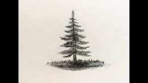 dibujos de pinos para colorear