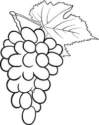 dibujos de uvas para imprimir