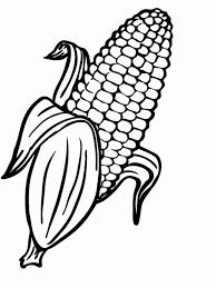 el maiz dibujo