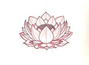flor de loto wallpaper