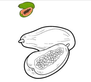 fotos de papayas fruta