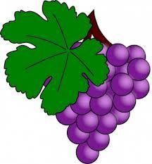 fotos de uvas 2