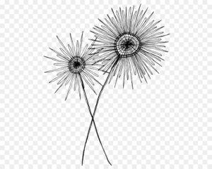 imagenes de dibujos de flores