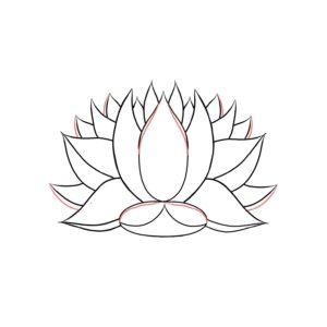 imagenes de flor de loto para dibujar