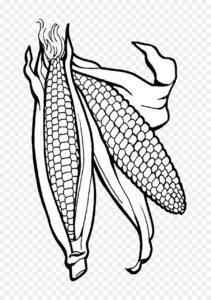 imagenes de maiz