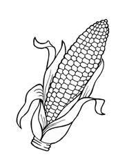 imagenes del maiz para colorear