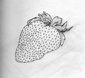 imagenes para fresas