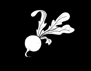 remolacha roja wikipedia