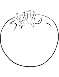 tomate infantil