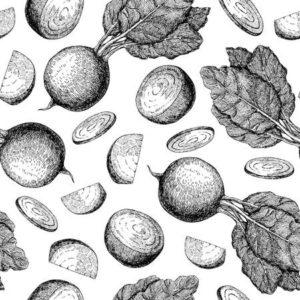 verduras imagenes