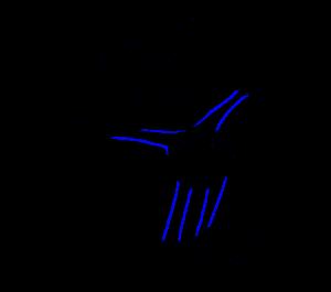 dibujos para colorear mickey